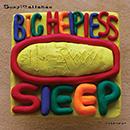 Suzy Callahan - Big Helpless Sleep